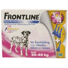Frontline Spot-On Hond van 20 tot 40kg 4 pipetten