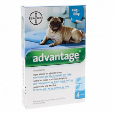 Bayer Advantage hond 100