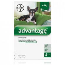 Bayer Advantage hond 40