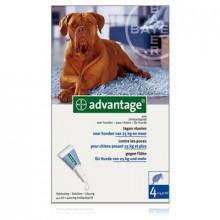 Bayer Advantage hond 400