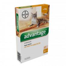 Bayer Advantage kat 40
